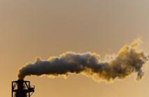 Inquinamento-inceneritore